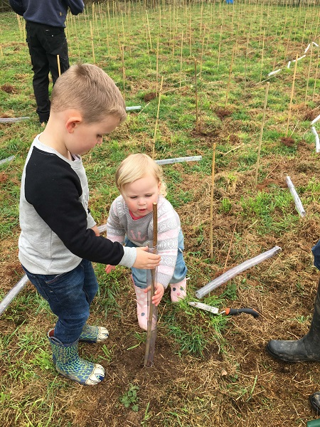 Family planting RED